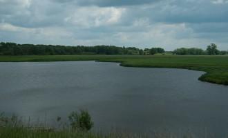 die breite Elbe bei Cumlosen