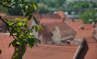 Am Aufstieg zur Burg Ptujski Grad