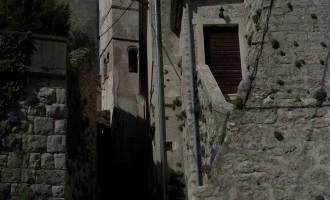 Plomin: Istrische Glockenblumen wachsen in allen Ritzen