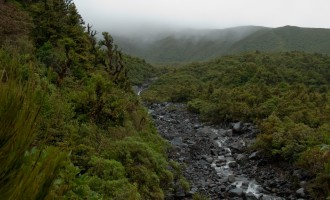 Dawson Falls: Wilkies Pools walk mit mehreren river crossings