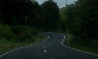 Forgotten World Highway: 1000 Kurven und 150 km durch den Regenwald nach Taumarunui