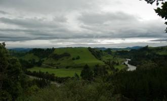 Oberlauf des noch kleinen Wanganui River südlich von Taumarunui