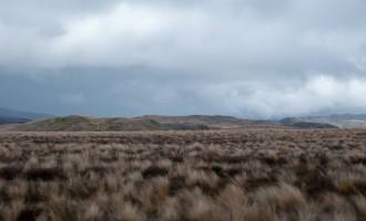 Ausläufer der Kaimanawa Range bei Waiouru