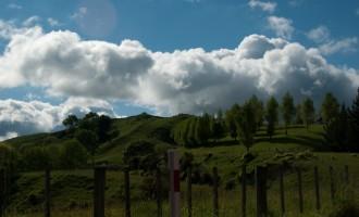 ein frischer, strahlender Morgen in Taihape - endlich Sonne!!