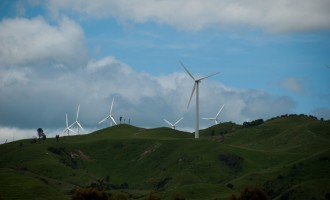 Tararua Wind Park bei Palmerston North - an Wind herrscht nie Mangel in NZ!