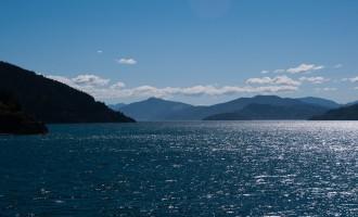 tief im Queen Charlotte Sound - Picton erreichen wir in Kürze