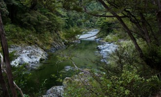 kristallklare pools am Pelorus River