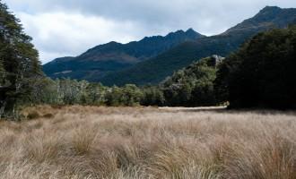 Ausblick von der Fenella hut Richtung Osten
