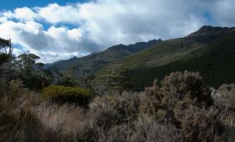 am Rückweg Richtung Cobb Reservoir