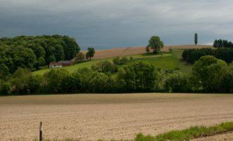bierbaum: kurze rast vor einem regen- und sturmreichen nachmittag