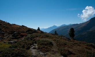 Blick talauswärts über Preiselbeersträucher - sie stärken unseren Aufstieg