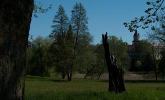 letzter Blick zum Schloss, bevor es westwärts weitergeht