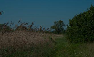 Naturschutzgebiet bei Böhne an der Havel