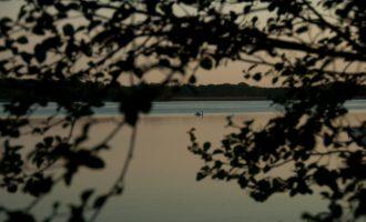 Ruhe und Einsamkeit am Königsberger See