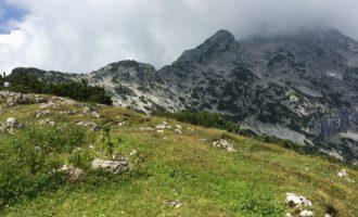 Gipfelrast am Kleinen Göll, mit Blick zur Freieck-Gruppe