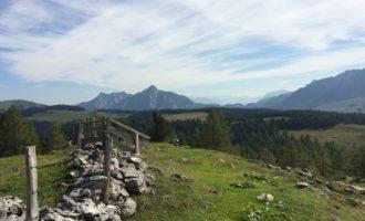 Pitscherbergalm auf der Postalm, mit Blick nach Osten zum Rinnkogel