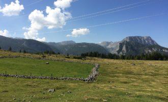 Blick von der Anger-Alm in Richtung Hagengebirge und Schneibstein (re)