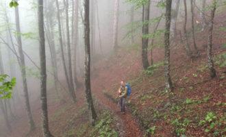 Im Nebel kurz unter dem Admonter Haus, hoch über dem Raben-Graben.