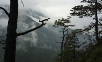 Der Nebel lichtet sich am Dörfelstein.