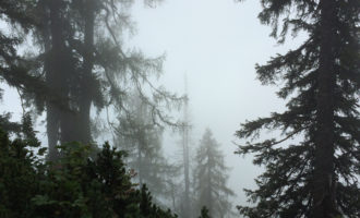 Nun doch wieder Nebelfetzen...