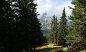 Das sog. Kleine Matterhorn, der Reichenstein.