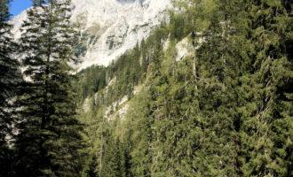 Vor demsteilen Wald- und Schattenstück gibt es einen letzten Ödstein-Anblick.