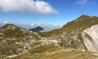 Fernblick zum Kreuzkogel (links sind Steinböcke im Gras gelegen).