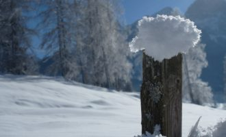 Winterwanderung in der Abtenauer Au