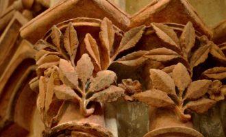Florale Verzierungen an den Dom-Kapitellen