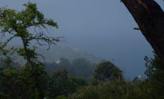 kurzes Lichten der Nebelfetzen bei Raposeira