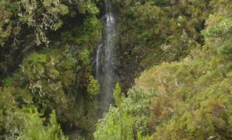 kleiner Wasserfall bei der Levada do 25 Fontes (25 Quellen)