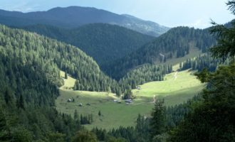 Blick hinunter zur Planina Konjscica