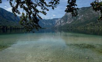 Mittagsrast am Bohinjsko-See im Sonnenschein