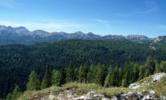 Blick nach Westen über die unzugängliche Karsthochebene namens Komna