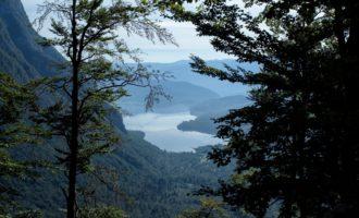 Tiefblick auf den morgendlichen Bohinjsko-See beim Aufstieg zum Dom na Komni, hier im Wald Pekel (=Hölle)