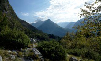 im Aufstieg durch den Hainbuchenwald zur Alm Planina Goricica